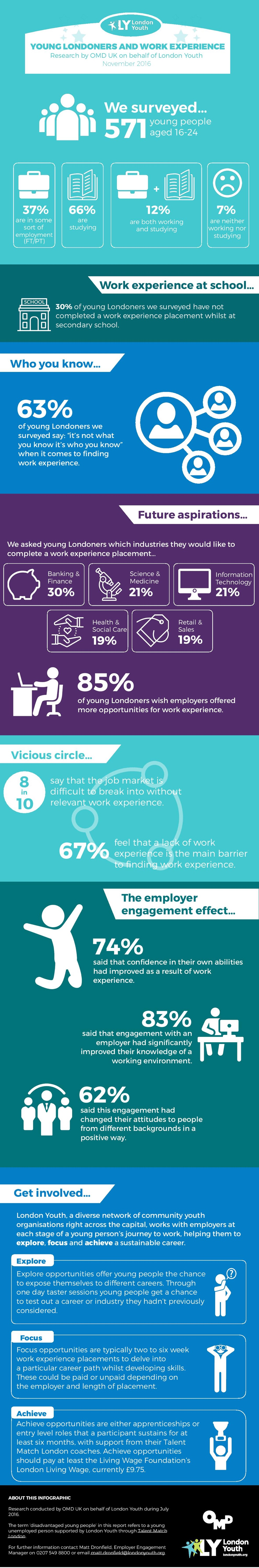 Full summary info graphic for work experience research