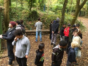 Wild Action Day in Sydenham Hill Wood